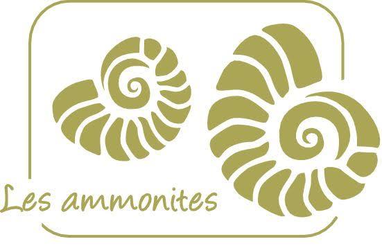 Riad Les Ammonites