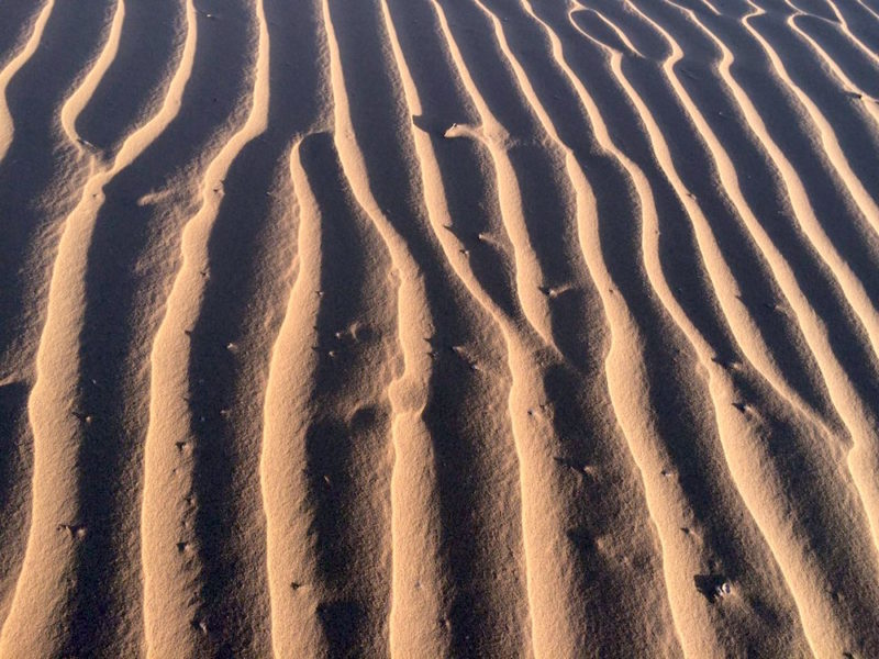 Artistry of the Sahara - Sand Patterns