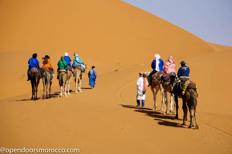 headed-to-camp-on-camels